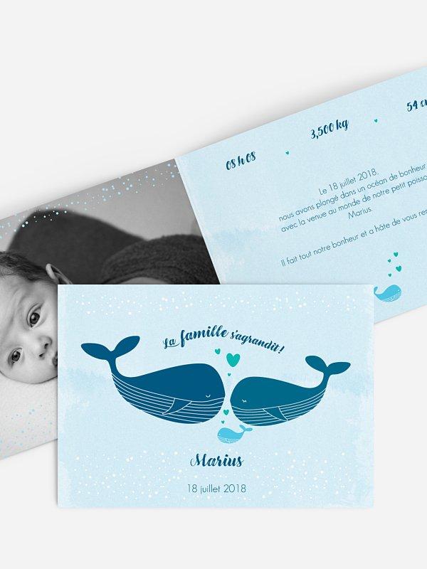 Faire-part naissance Famille de la mer