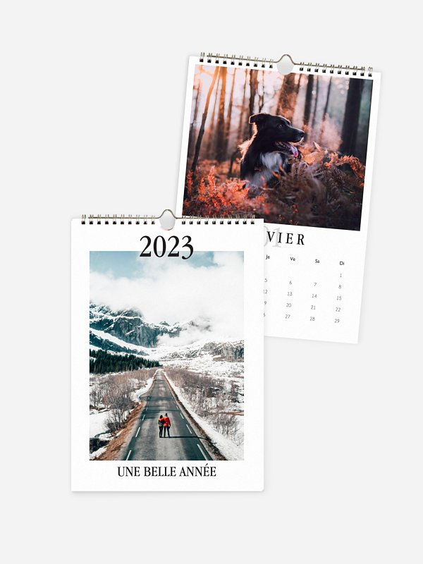 Calendrier mural Projets