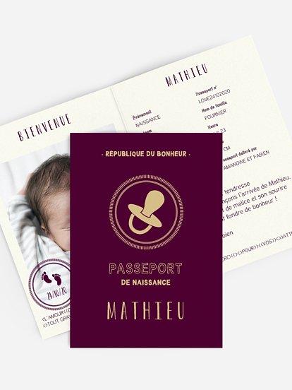 Passeport bébé