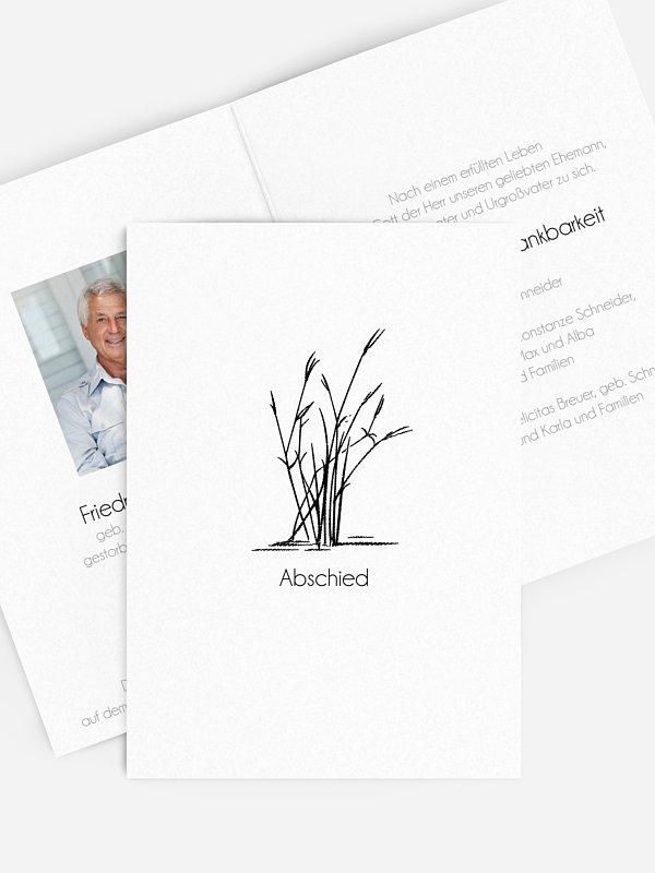 Trauerkarte Schilf